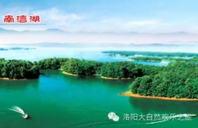 """在南湾湖有六十一个岛屿之中,它被誉为""""鸟的天堂""""园内"""