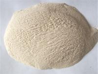 UNF-B1高强高效泵送剂